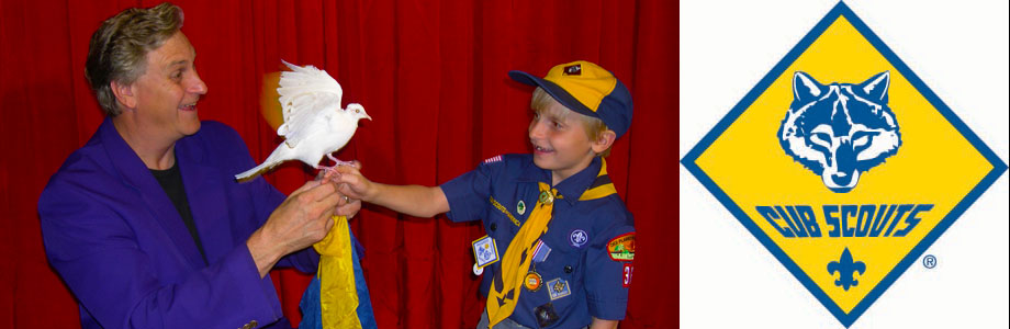 cub_scouts_banner